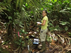 Field work in Costa Rica, post-doc Diana Oviedo Vargas